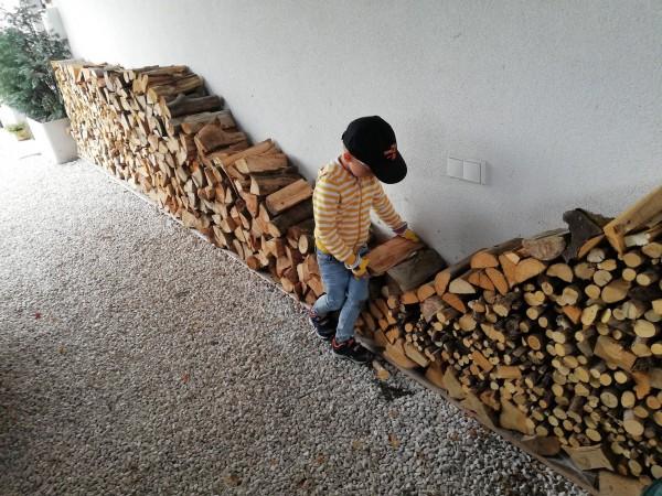 Holzvorrat1