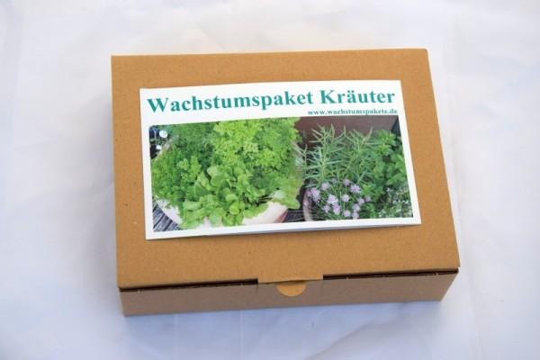 Kräuterpaket - Saatgut